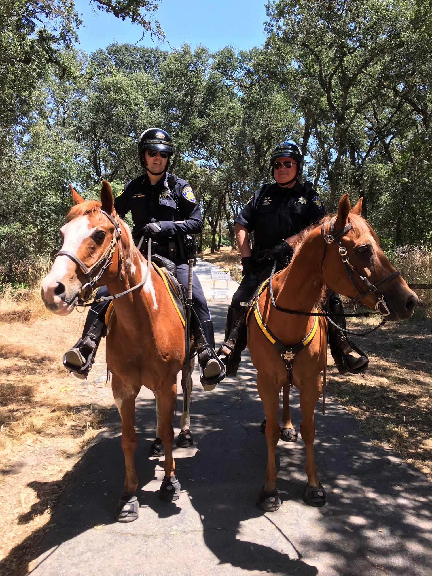 Park Police officers from the Fulton El-Camino Recreation and Park District on horseback.