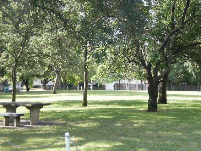 Park picnic site