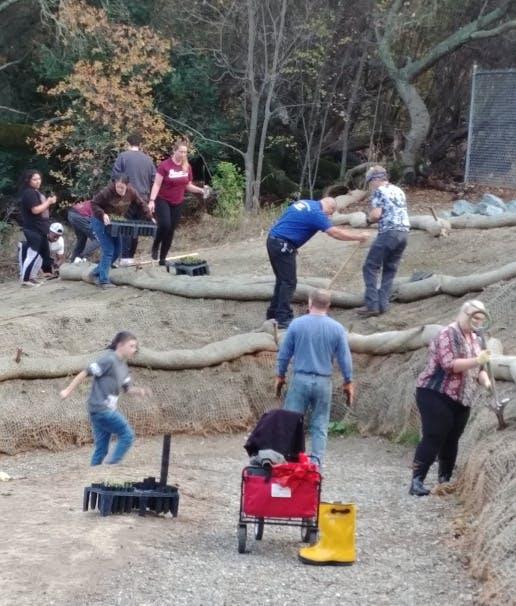 Volunteers working on planting.
