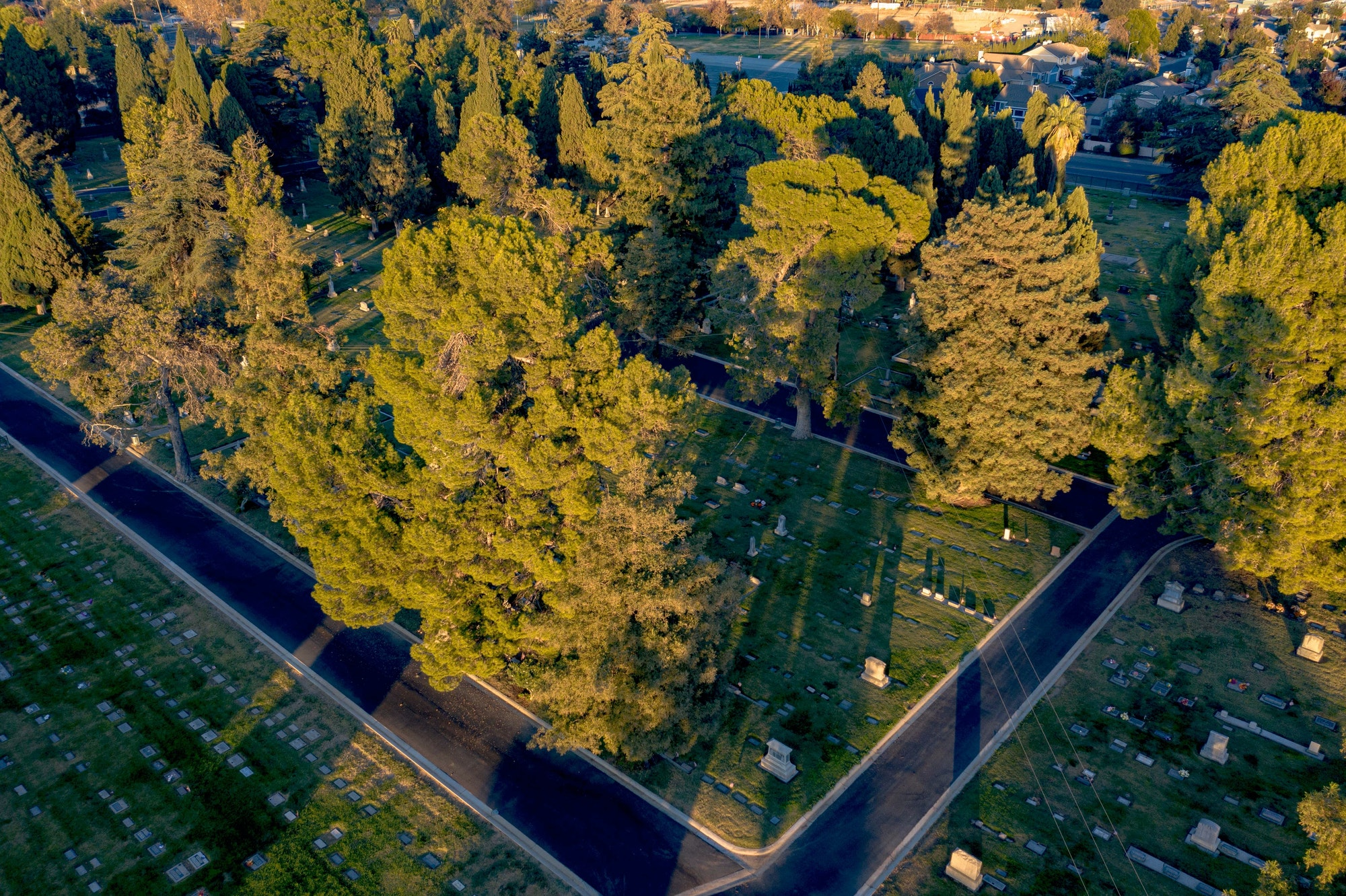 May contain: nature, outdoors, scenery, landscape, aerial view, plant, and tree