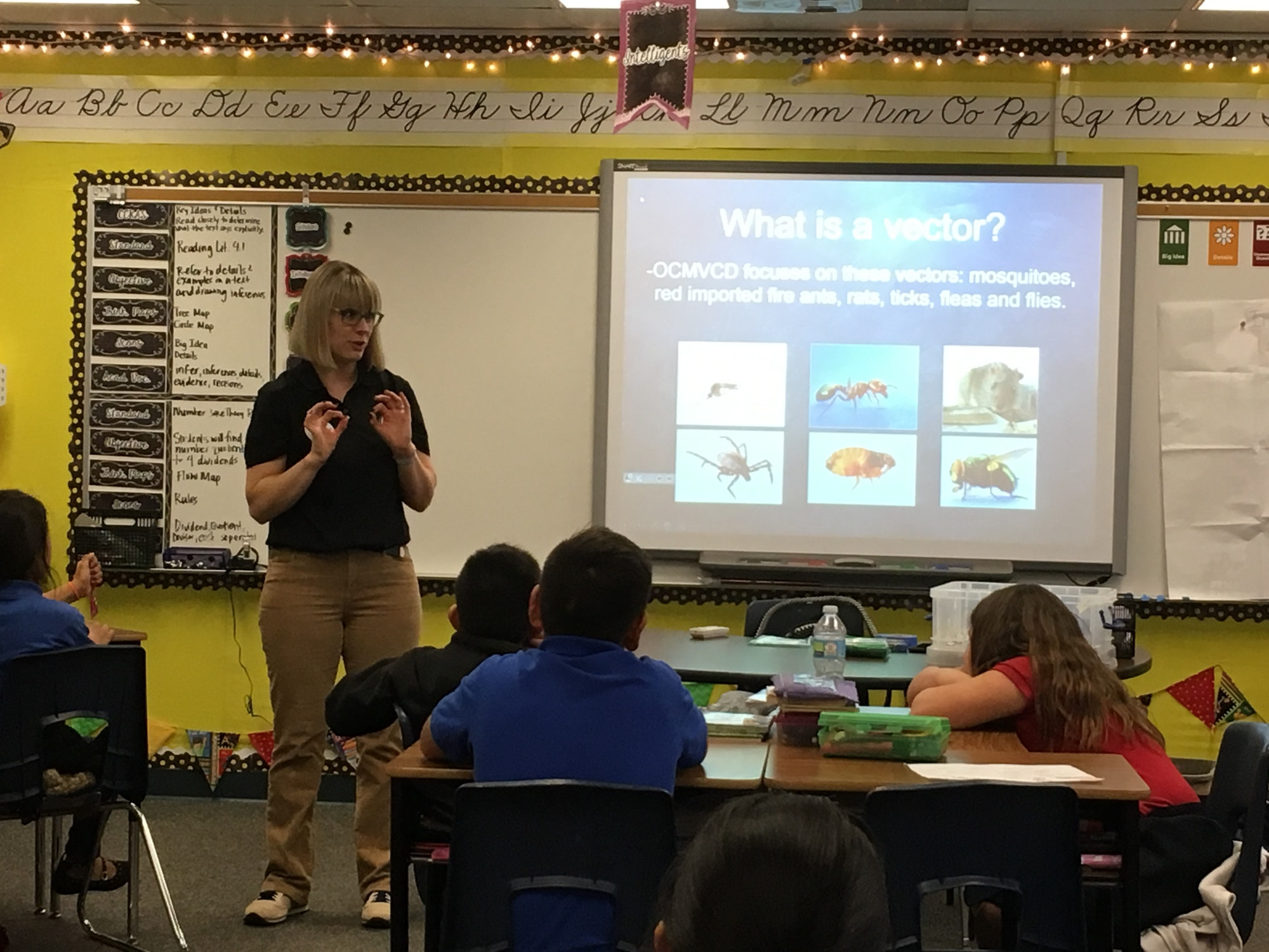 Classroom Education Presentation