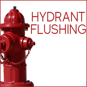 May contain: hydrant and fire hydrant