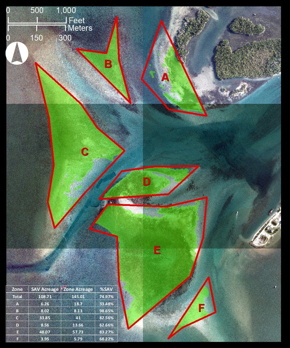 aerial map looking straight down of Sebastian Inlet flood shoal with 6 zone boundaries and chart showing seagrass coverage in acres