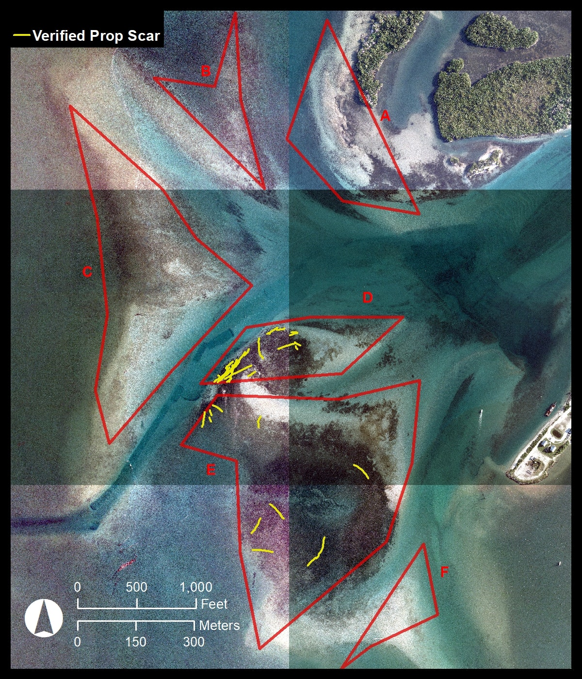 aerial map looking straight down of Sebastian Inlet flood shoal with 6 zone boundaries and indicators where prop scars were found