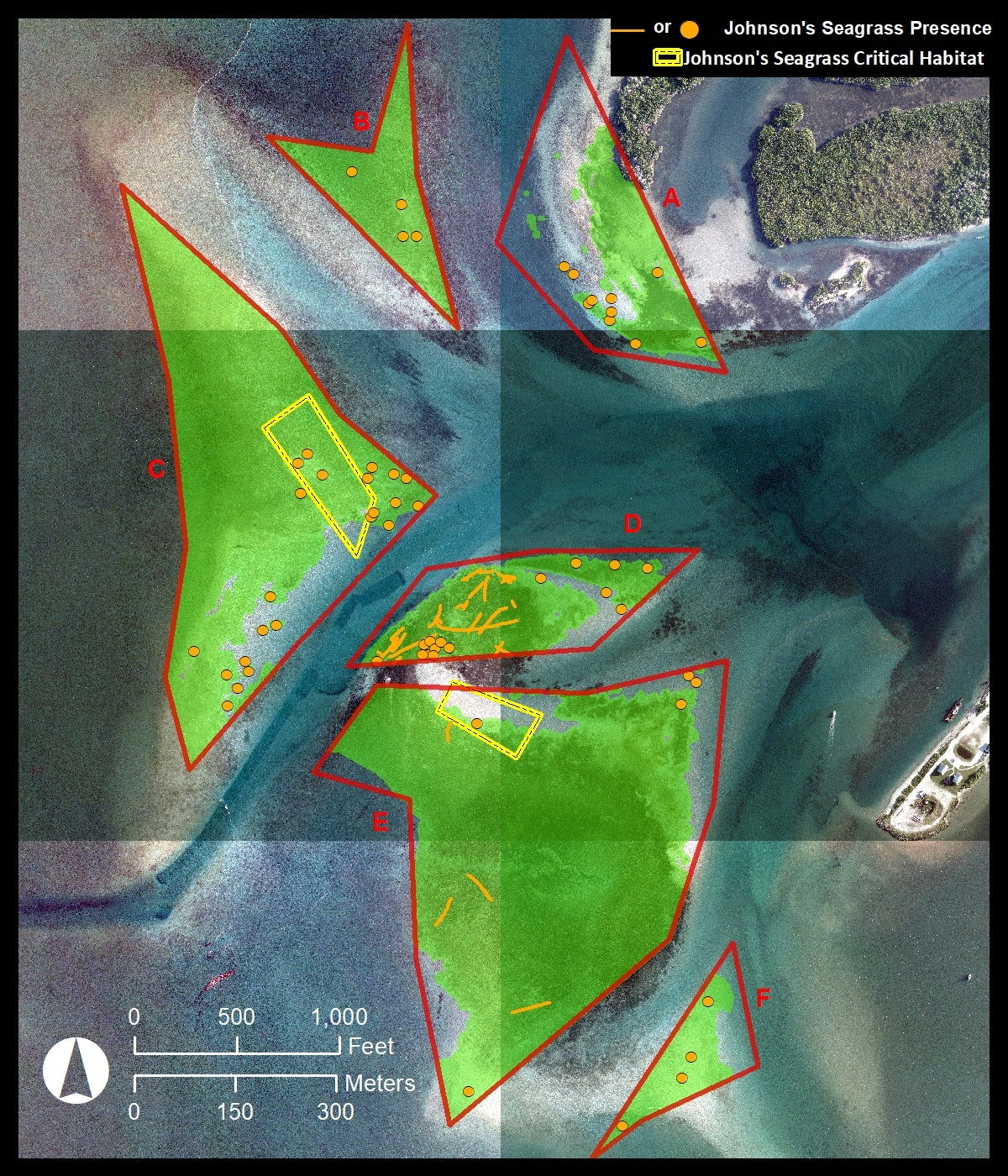 aerial map looking straight down of Sebastian Inlet flood shoal with 6 zone boundaries and indicators where Johnson's seagrass found