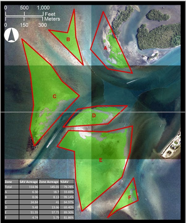 map of seagrass shoal