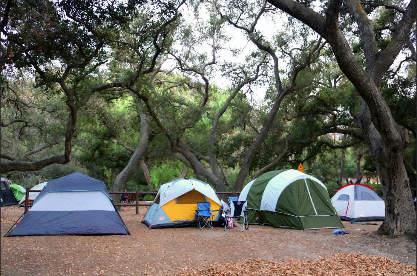 End of Summer Camp Out