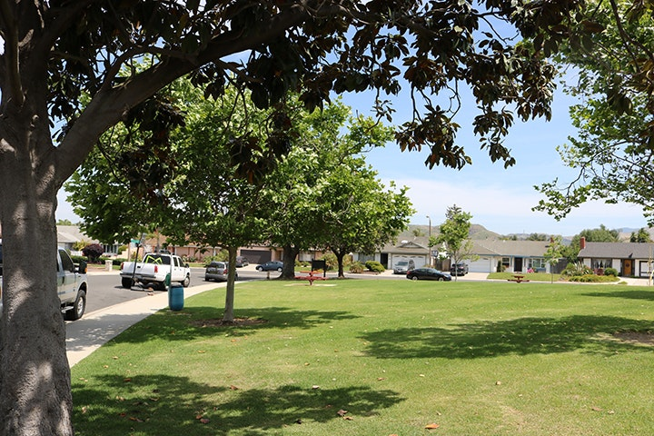 Birchview Park