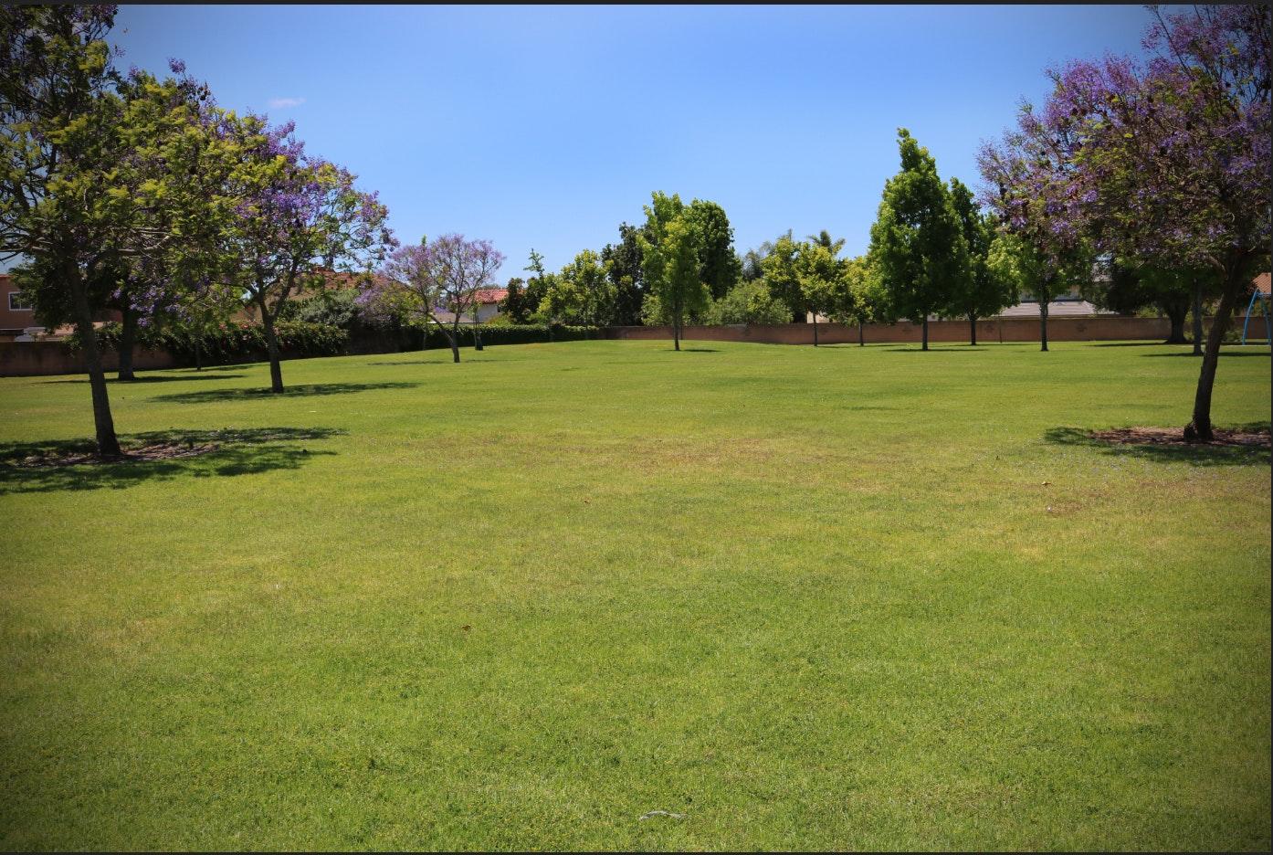 Adolfo Park