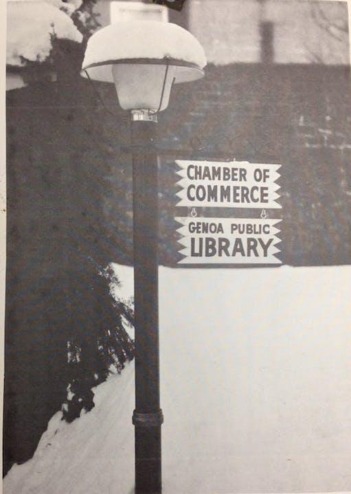 May contain: lamp post