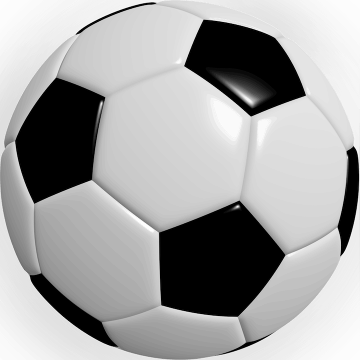 May contain: soccer ball, team sport, soccer, sports, team, football, sport, and ball