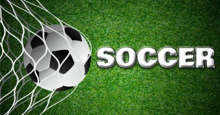 May contain: soccer ball, soccer, football, sport, team, team sport, sports, and ball