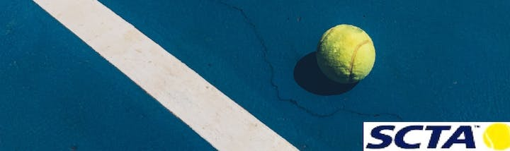May contain: ball, tennis ball, tennis, sports, and sport