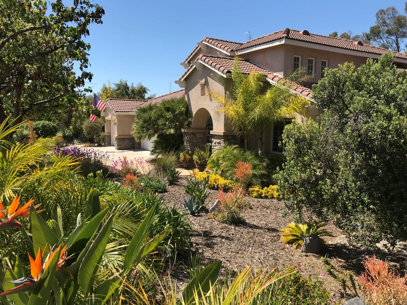Front yard with water wise landscaping, such as bird of paradise, sea lavender, mulch and river rocks.
