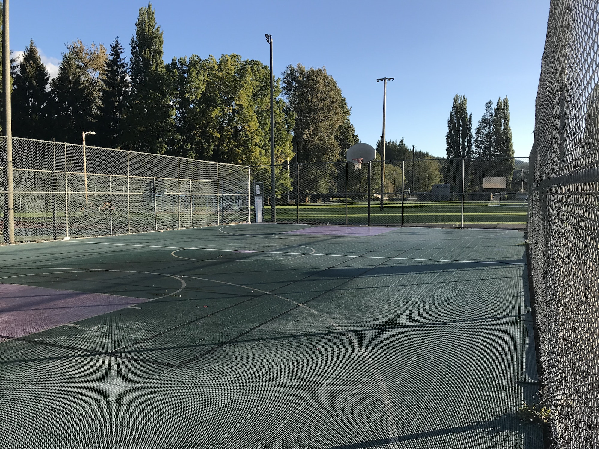 May contain: basketball court, basketball, team sport, sport, team, and sports