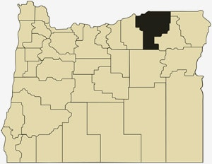 image of Oregon with Umatilla County in black