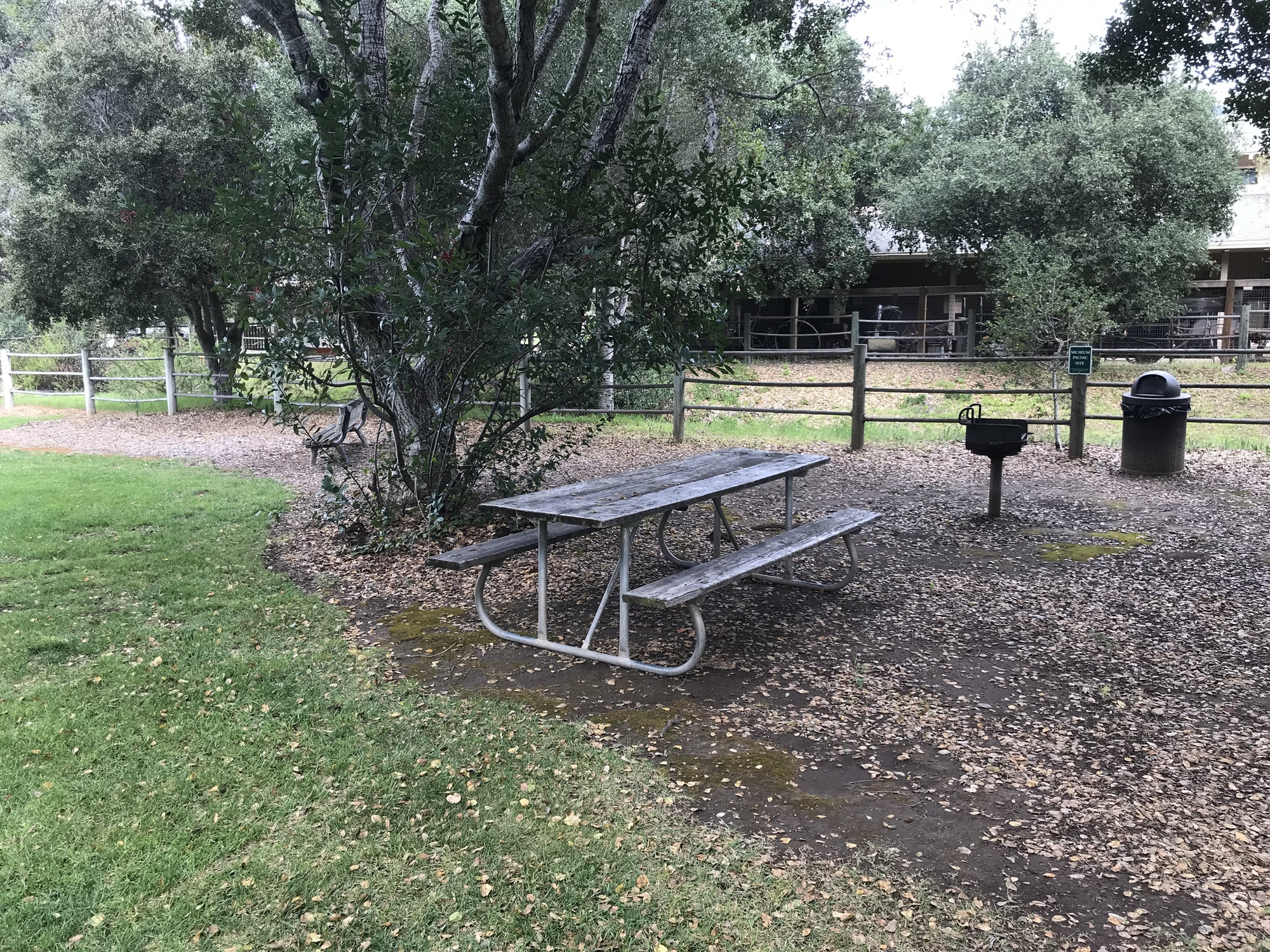 East side picnic area with table, small BBQ grill and grass