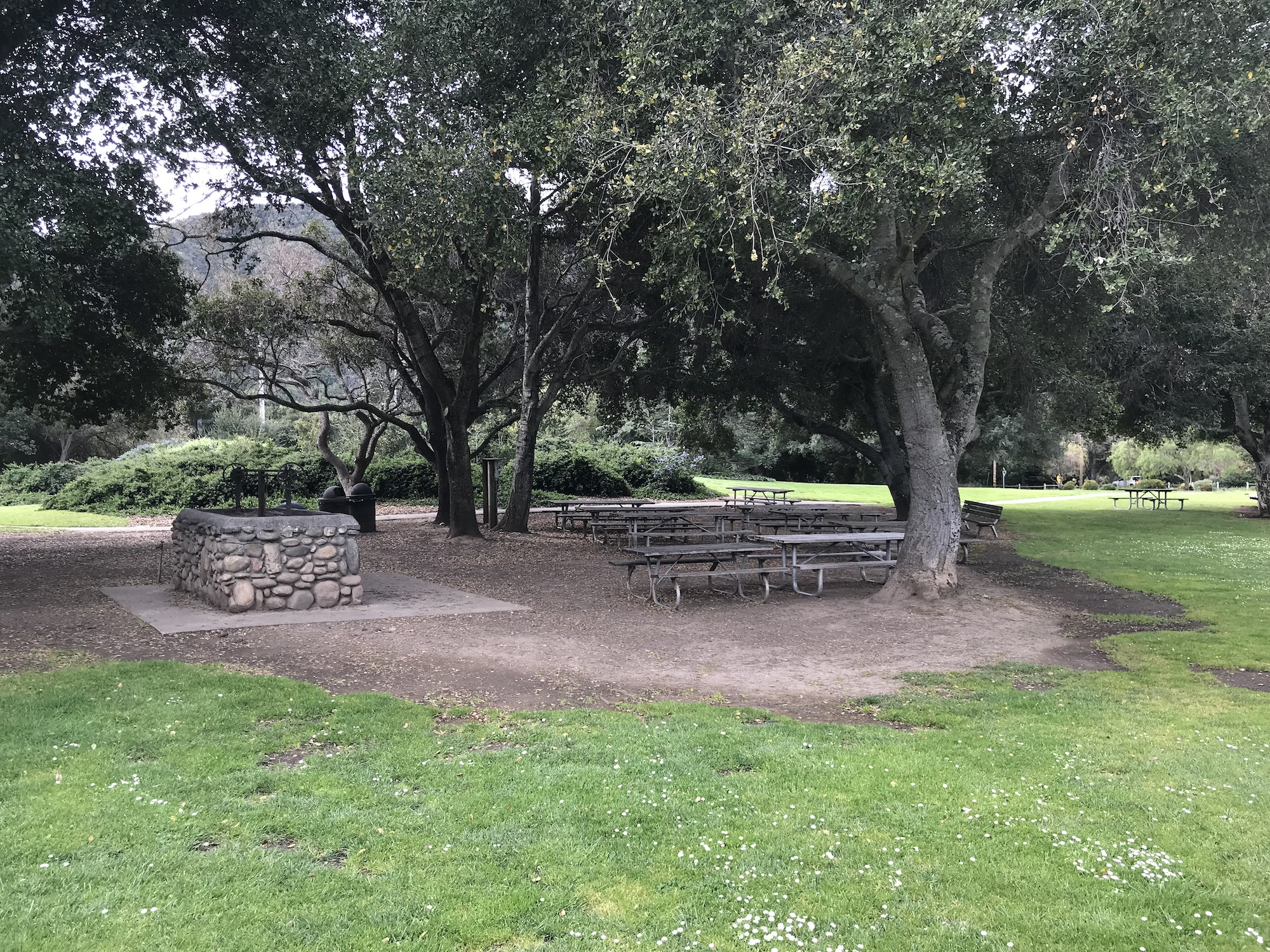 Large BBQ area with grass. trees & picnic tables