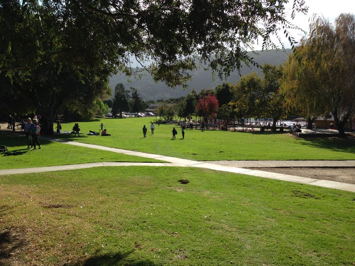 View of park with people walking on grass