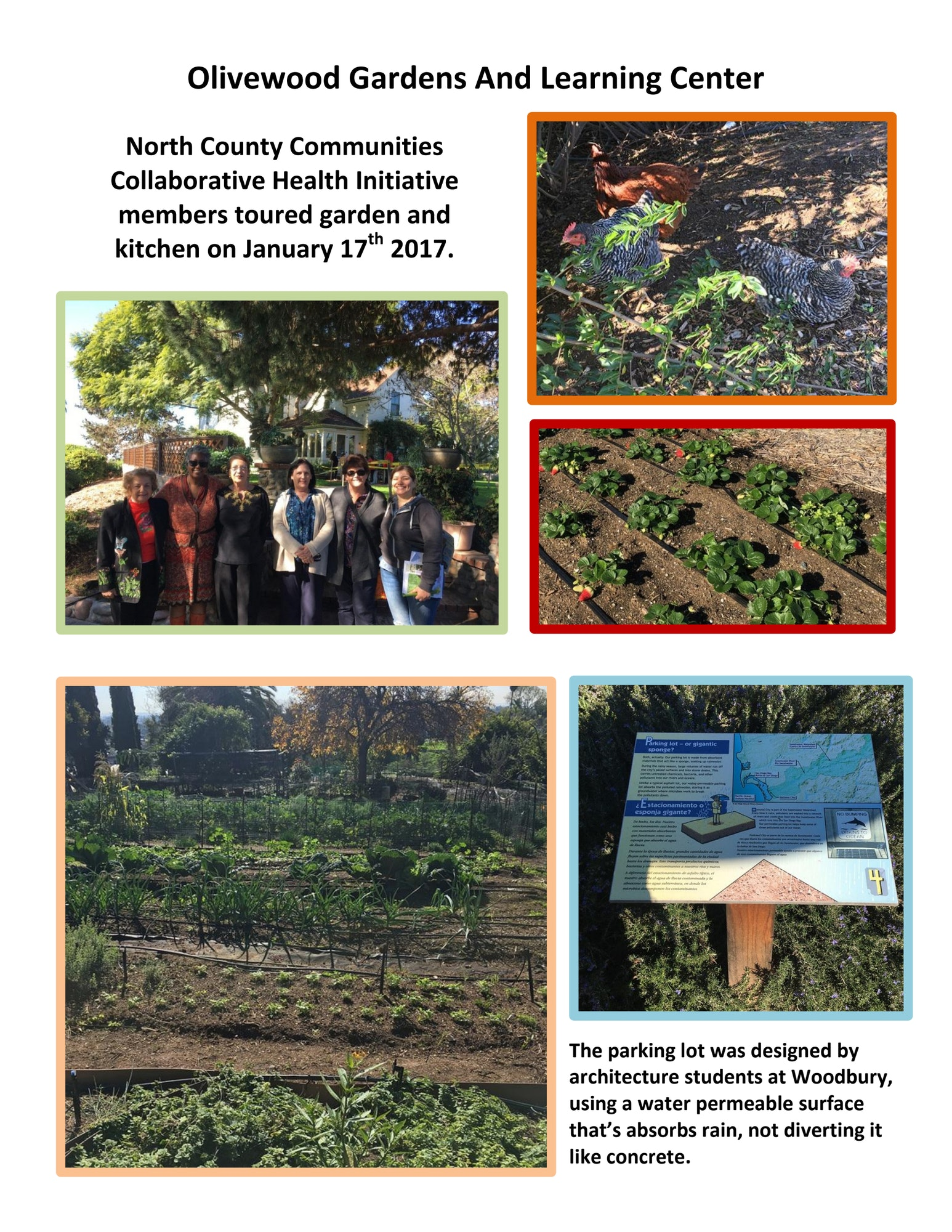 Olivewood Gardens And Learning Center Fallbrook Regional