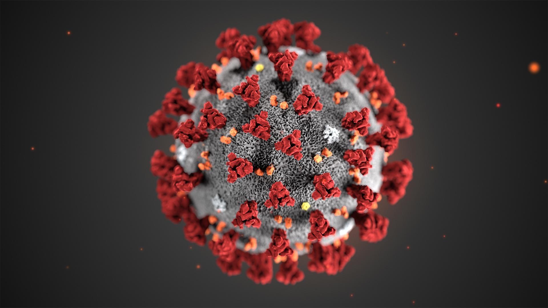 Novel Coronavirus on cell