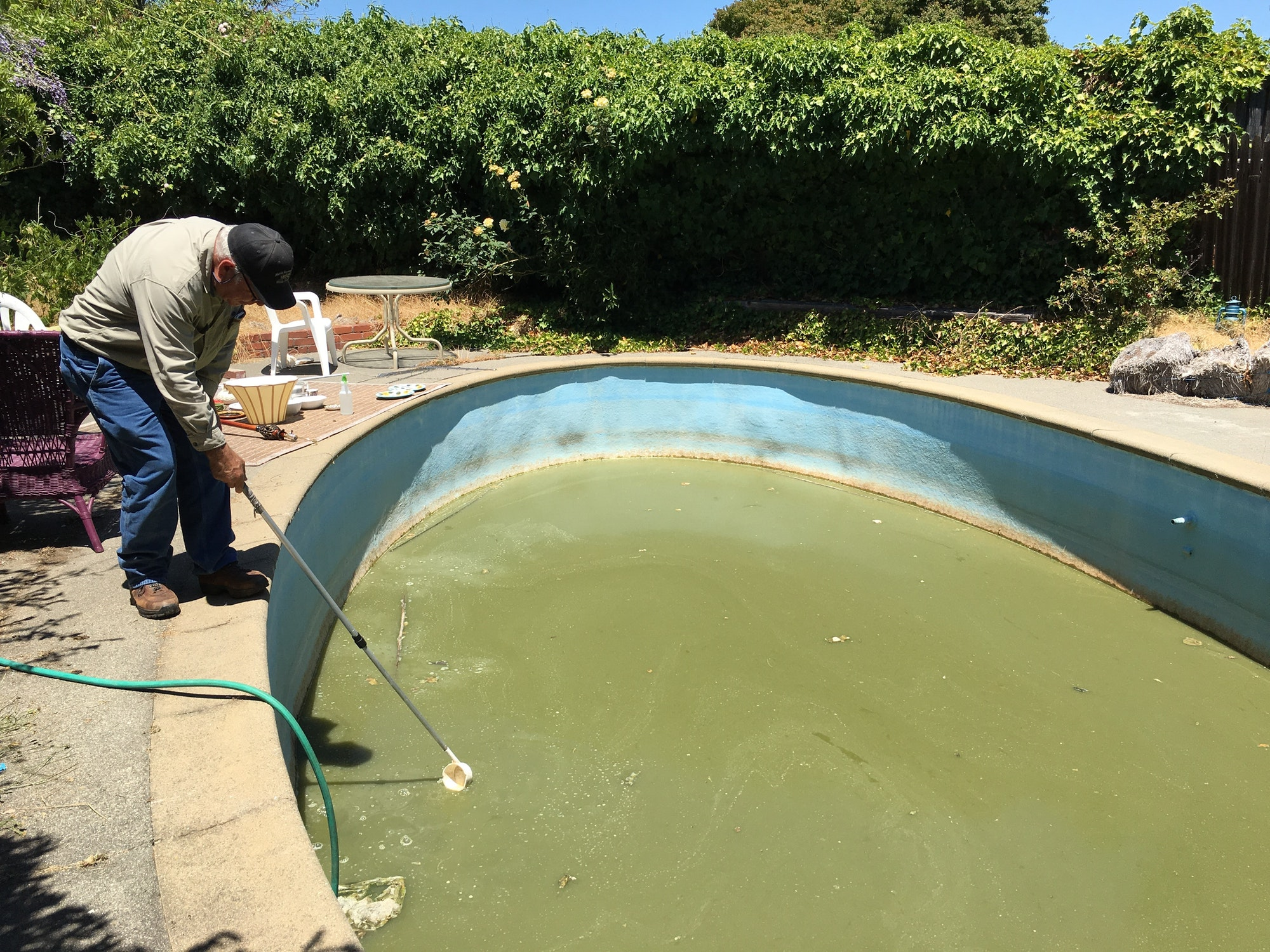 Neglected  swimming pool inspection