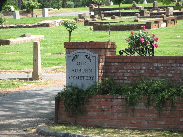 cemetery, plants, grass