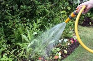 May contain: outdoors, garden, gardener, gardening, and worker