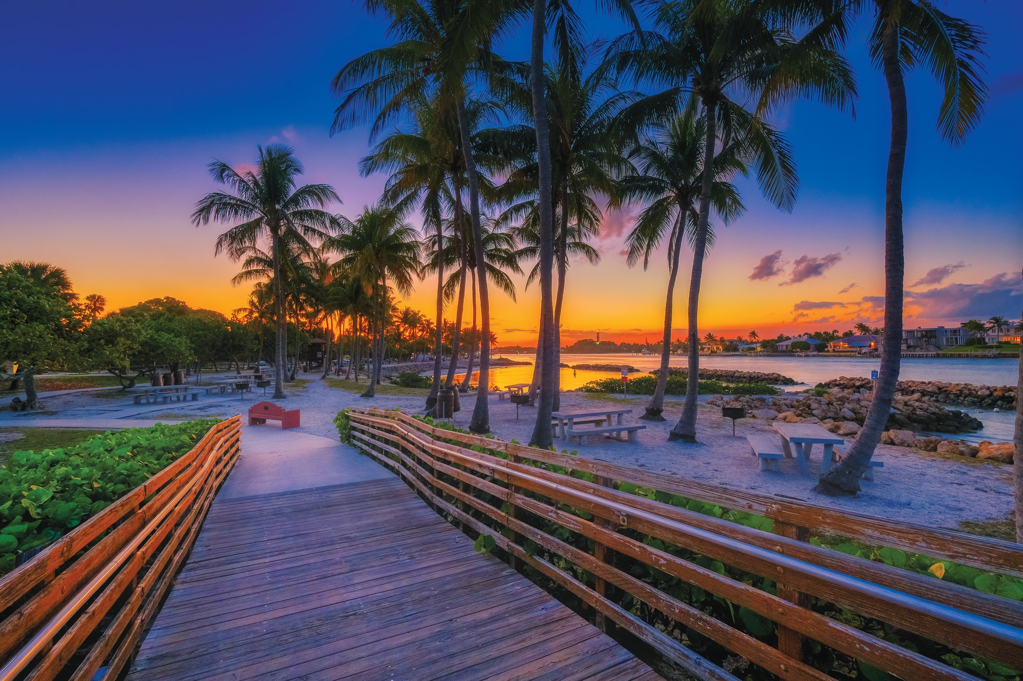 Image of boardwalk walkway with palm trees and yellow blue sunset in background