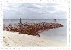 1968 photo showing rock jetty from beach into ocean with two men standing on top