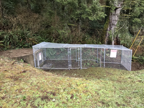 Image fo new cyclone fence enclosure at spring