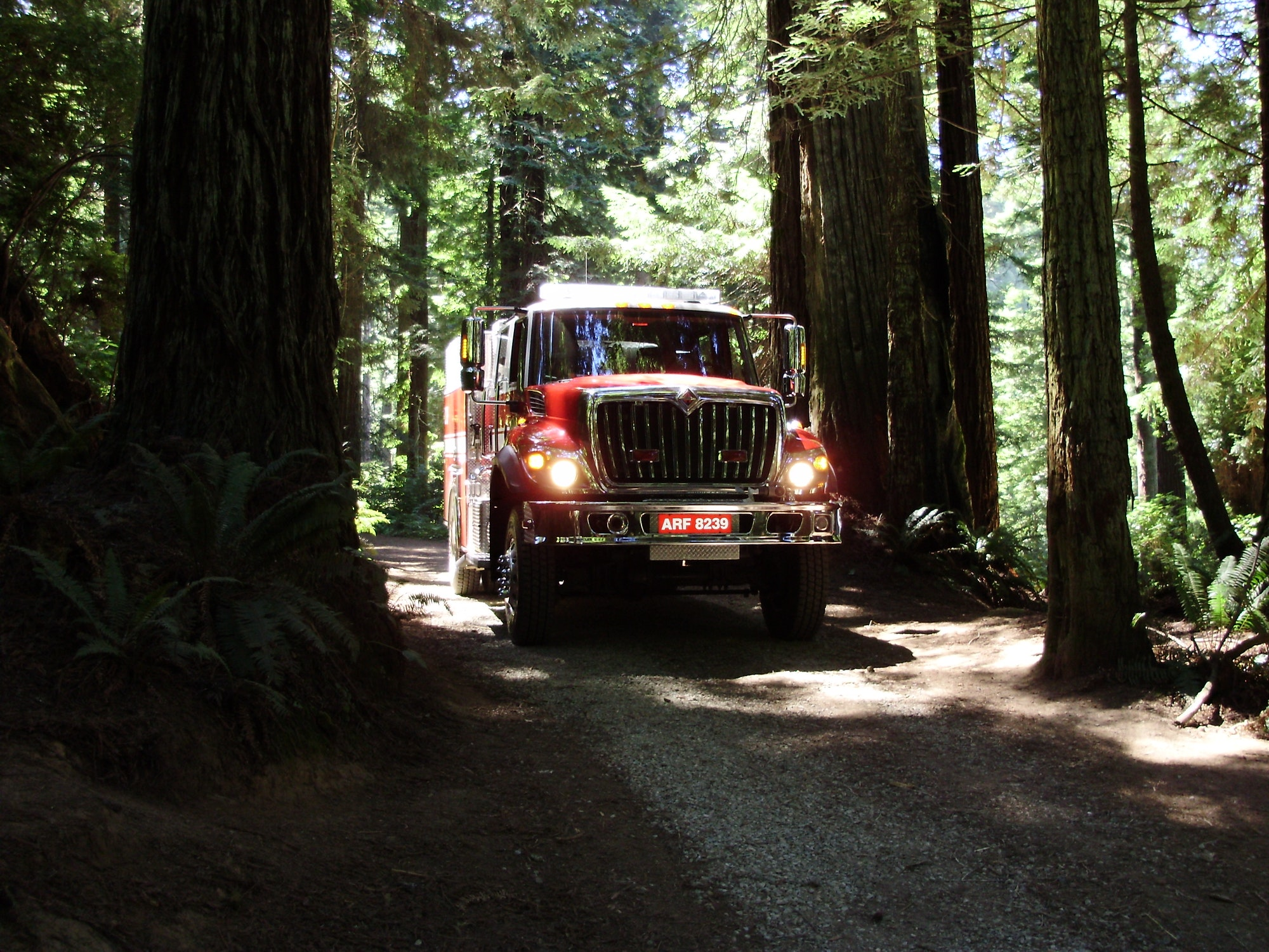 Type 3 engine driving through the Arcata Community Forest.