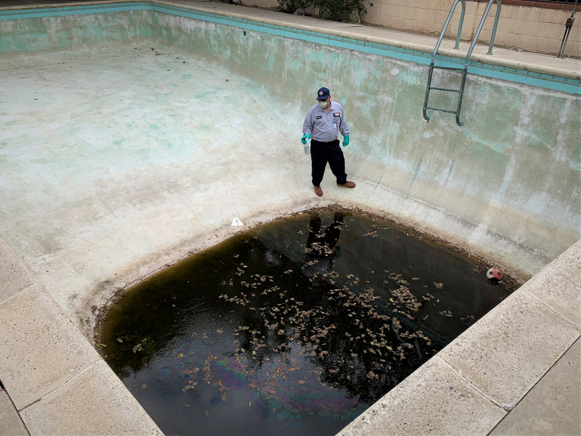 May contain: person, green pool, spray bottle, half empty pool, and stairs