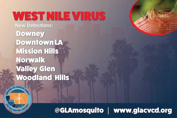 May contain: west nile virus text, mosquito, cities, communities with positive mosquitoes
