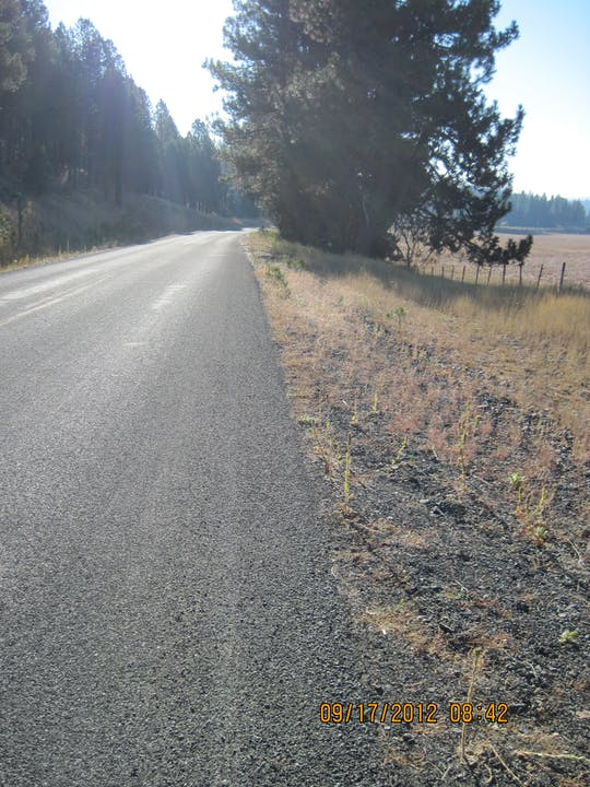 May contain: tarmac, asphalt, road, dirt road, gravel, and rug