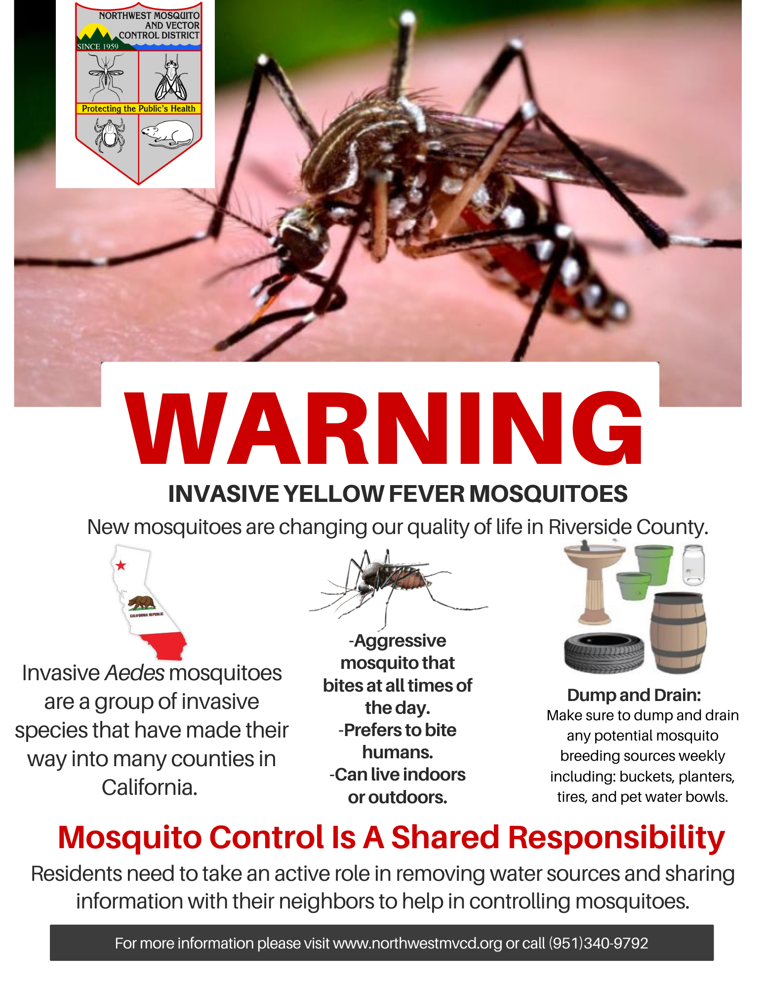 May contain: mosquito, animal, invertebrate, insect, arachnid, and spider