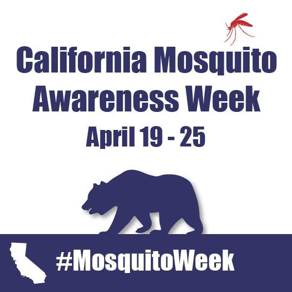 Mosquito Awareness Week Photo