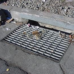May contain: drain