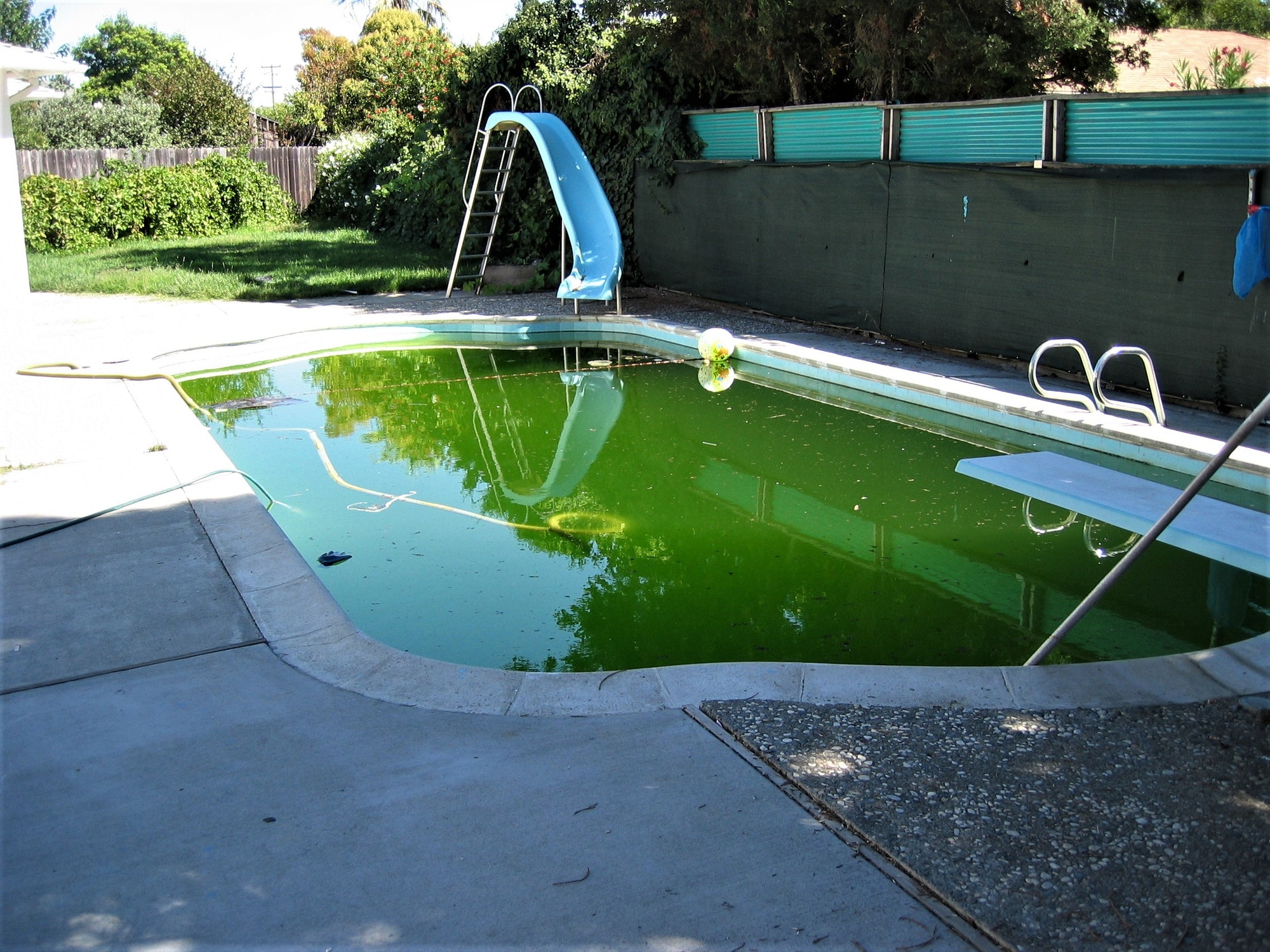 Swimming Pools - Alameda County Mosquito Abatement District