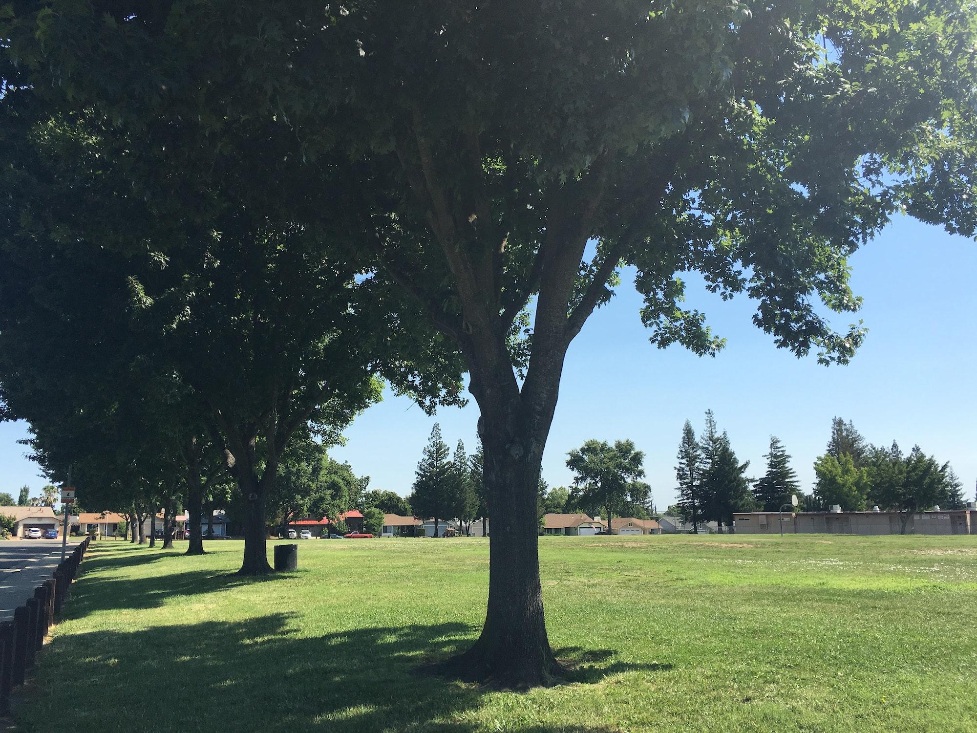 Ridgepoint Park open grass space