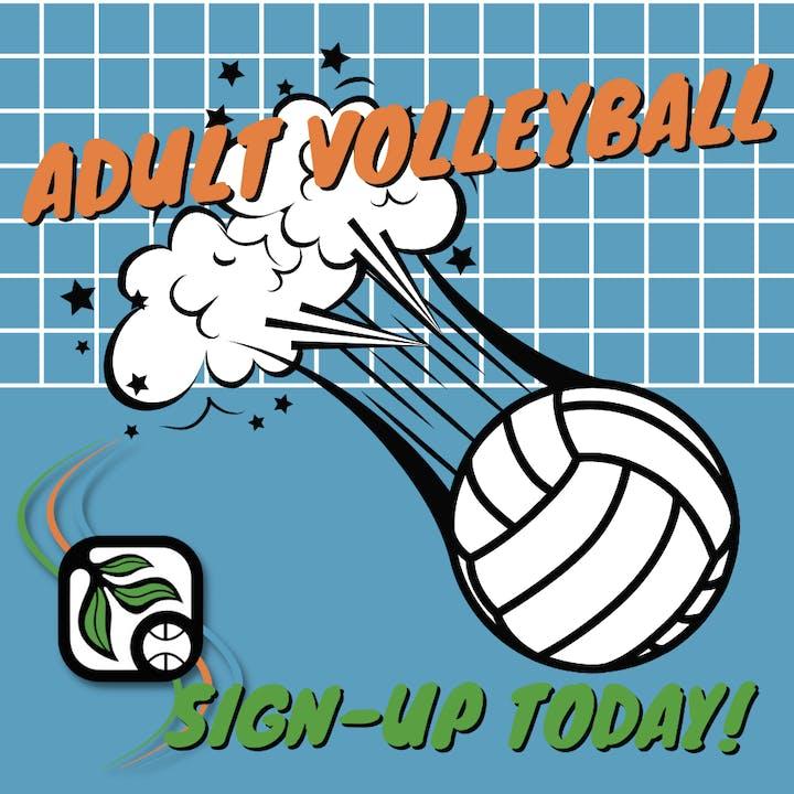 Volleyball, net, words