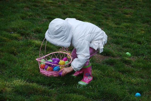 May contain: person, human, grass, plant, basket, food, and egg