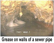 Grease on walls of sewer pipe