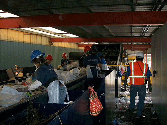 Crew sorting recyclables