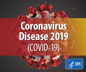 Picture of the Coronavirus Disease 2019