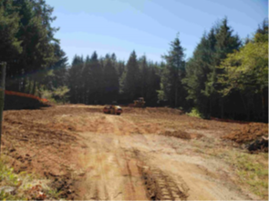 Picture of clearing at the water treatment building site