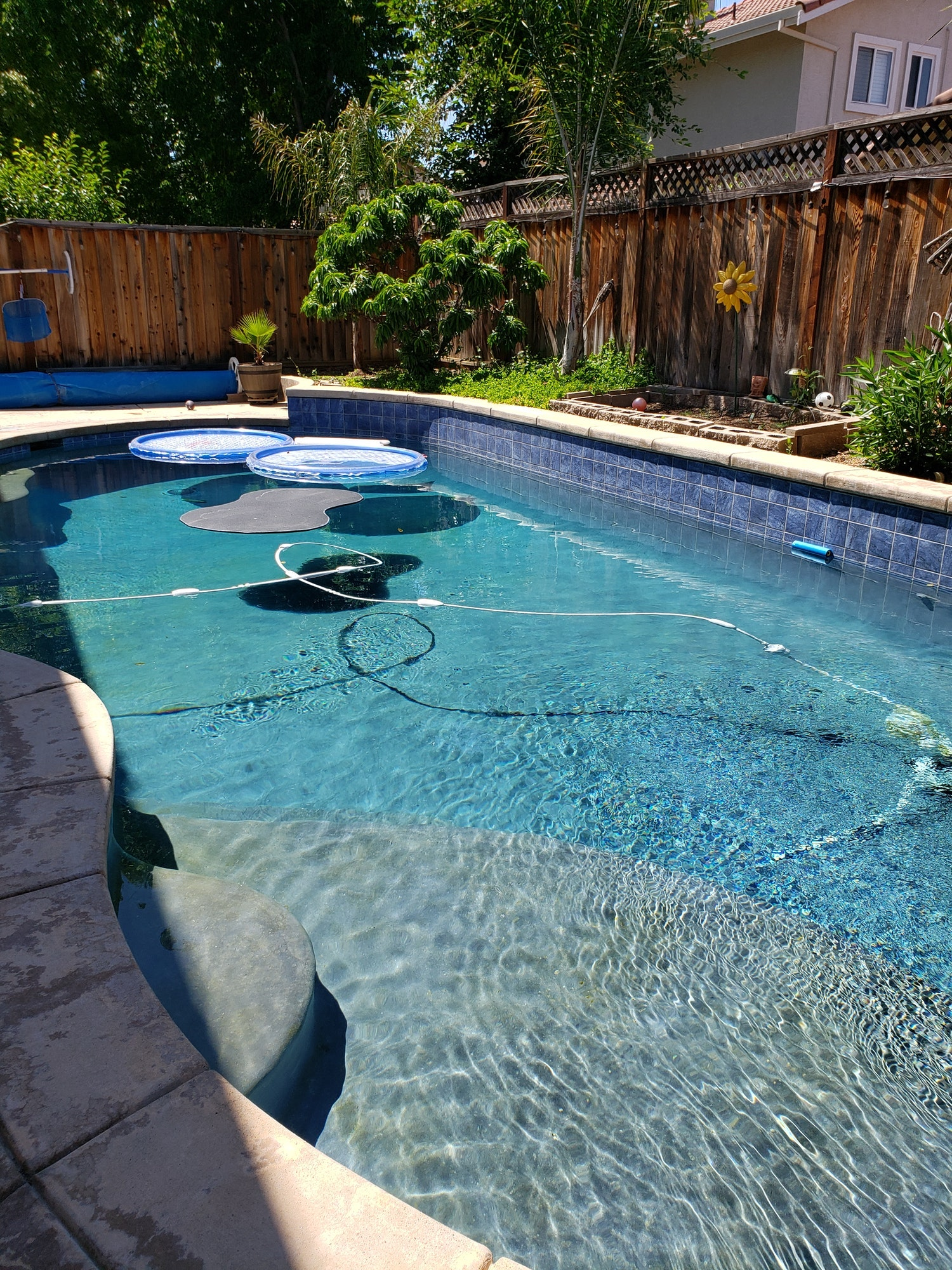 May contain: pool, water, yard, nature, outdoors, swimming pool, and flagstone