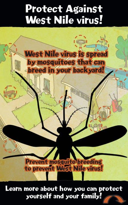 prevent mosquito breeding flyer