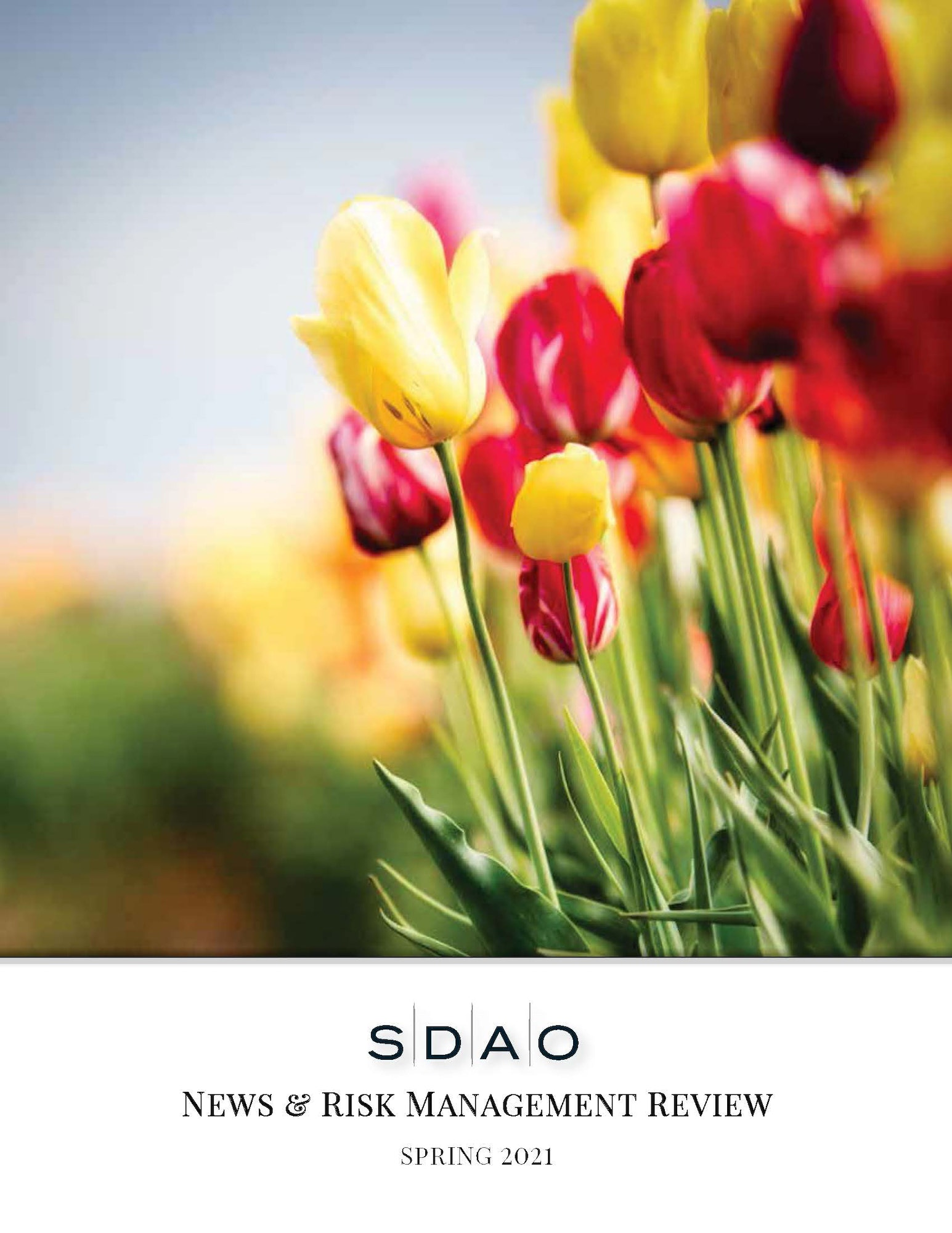 May contain: plant, flower, blossom, and tulip; Text: SDAO News & Risk Management Review, Spring 2021