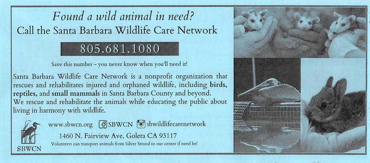 Santa Barbara Wildlife Network